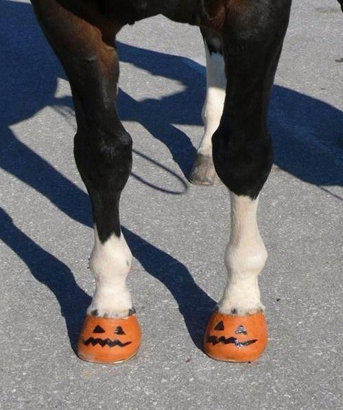 Cascos en forma de calabaza para Halloween