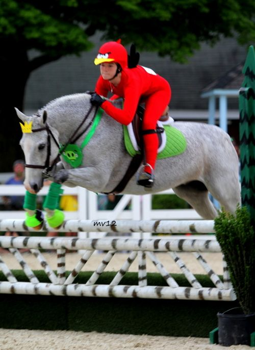 Disfraz caballo super heroe