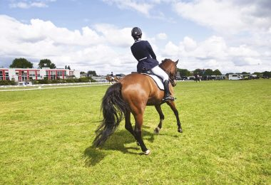 Rutinas de equitacion