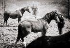 Algunas reglas no escritas de la equitación