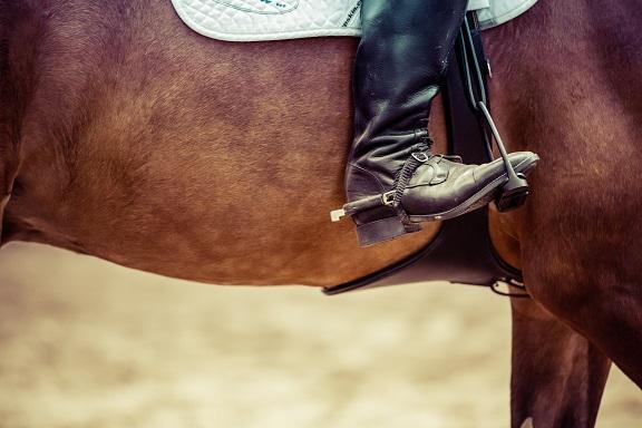 Reglas no escritas de la equitación